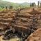 Congo, cobalto e coltan: le C della conquista e il nuovo oro delle milizie
